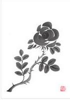 Роза (суми-э)