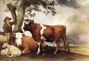 Молодой бык (Паулюс Поттер)